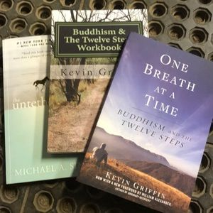 Other - 3 recovery based/Buddhism books